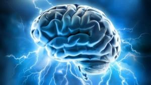 Sistema di attivazione Reticolare - Cervello - UYM