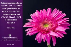 Immagini Motivazionali - Granello - UYM