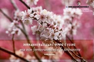Immagini Motivanti - Primavera - UYM
