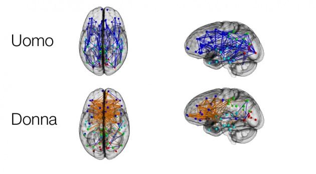 Differenza tra Uomini e Donne due mondi diversi - cervello - UYM