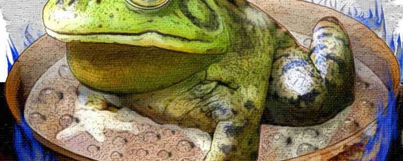 Principio della rana bollita