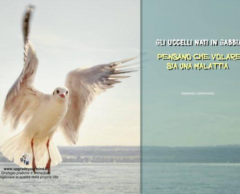 frasi motivazionali gli-uccelli-nati-in-gabbia-uym
