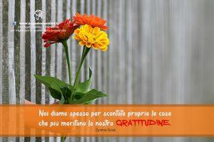 Aforismi che danno la carica - La gratitudine