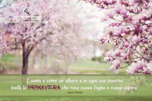 Aforismi motivazionali - primavera - uym
