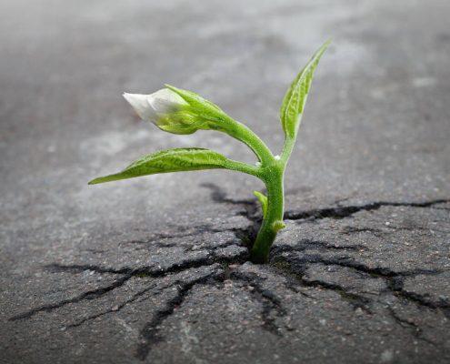 Resistere alle avversità della vita - uym