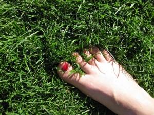 Cos'è la felicità - in punta di piedi - uym