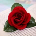 Poesie Motivazionali - UYM